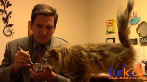 食い意地が張ってる猫