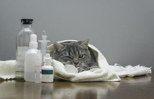 タオルにくるまった猫と薬品の瓶