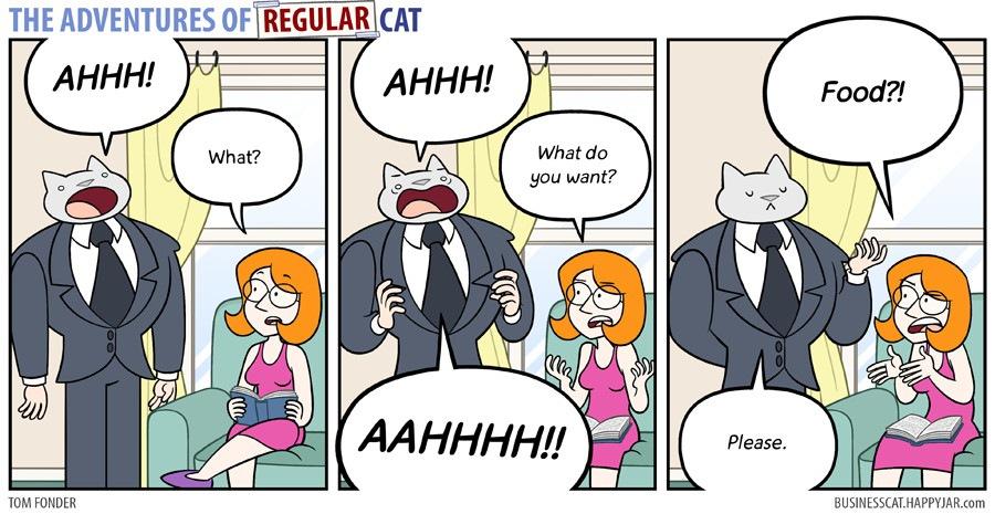 猫CEOのご飯が欲しい回