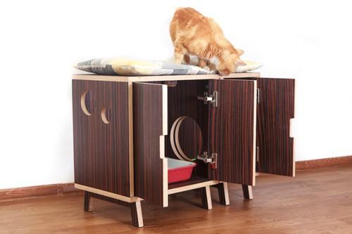 家具の中に収納された猫のトイレ