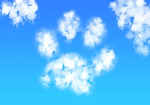 青空に浮かぶ肉球型の雲