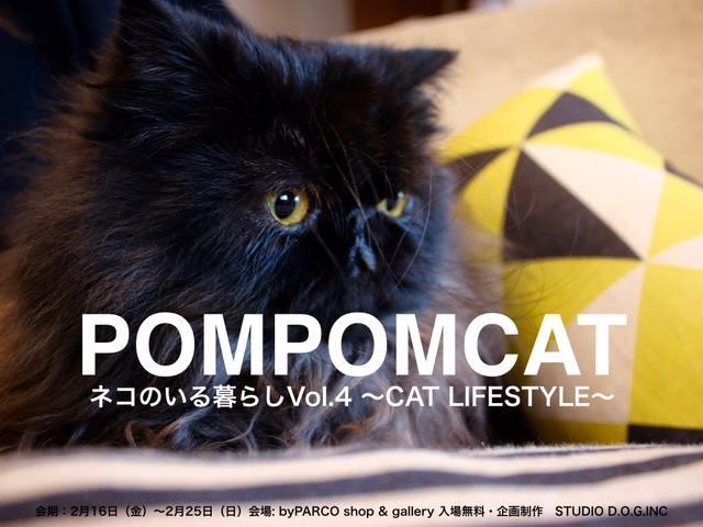 黒猫のポスター
