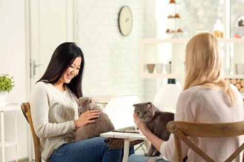 猫を抱いて話す人達
