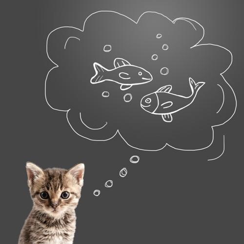 黒板と子猫