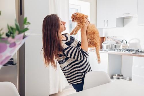 猫を構う人
