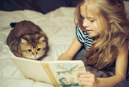 子供に絵本を読んでもらう猫