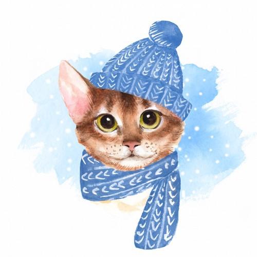 青い帽子とマフラーを巻いた可愛い猫の絵