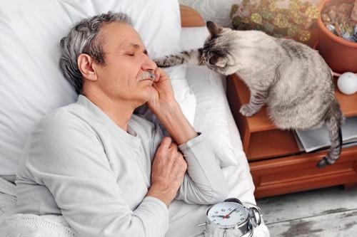 寝ている男性の顔に手を伸ばす猫