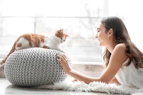 クッションの上の猫を見つめる女性