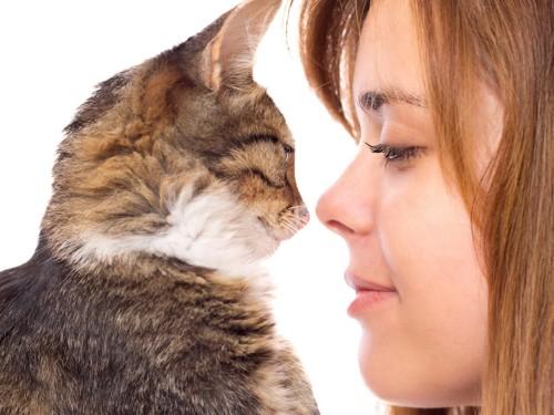 飼い主と鼻を近づける猫