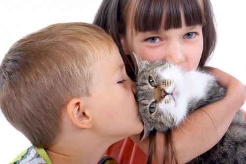 猫の頭にキスする子供