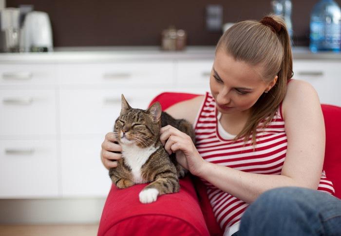 ソファーに座っている女性と猫