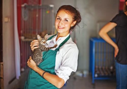 エプロンをして子猫を抱っこしている女性