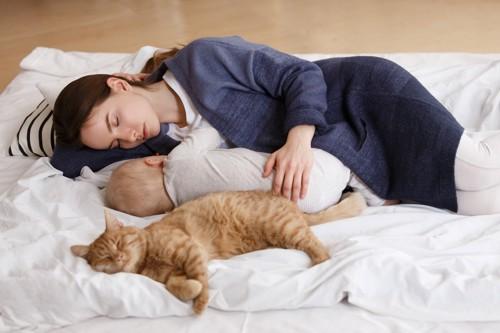 女性と赤ちゃんと一緒に眠る猫