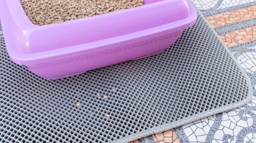 ピンクの猫トイレとグレーのマット