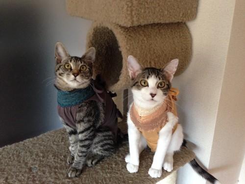 術後服を着た2人