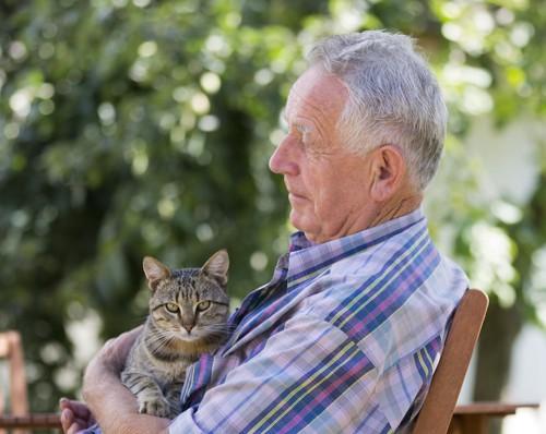 白髪のおじいさんに抱かれている猫