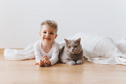 少年と並ぶ猫