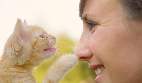 鳴く子猫と向かい合う女性