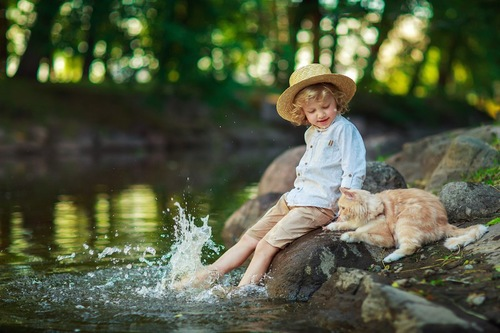 水辺で遊ぶ子供と猫