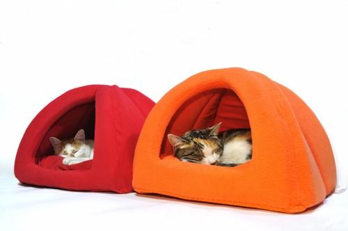 赤とオレンジの猫ドームに入る2匹の猫