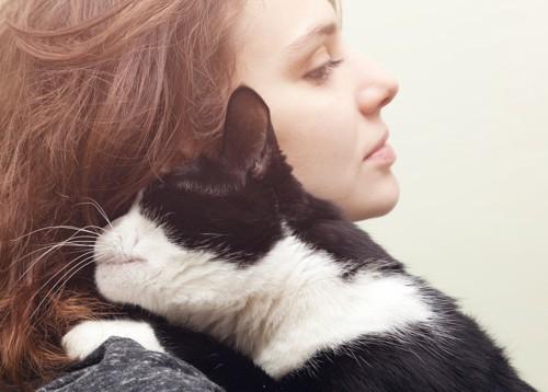 人にべったりする猫