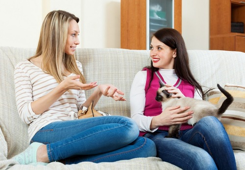 会話する女性と膝の上の猫