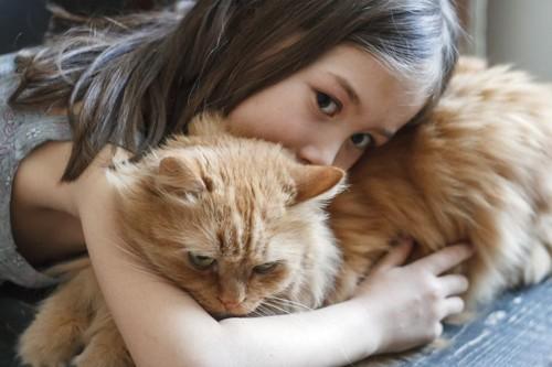 猫に抱きつく少女
