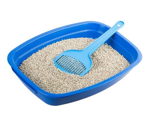 猫砂が入っている猫用トイレ