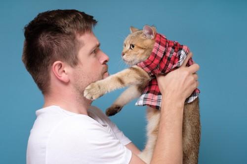 飼い主に睨まれてそっぽ向く猫