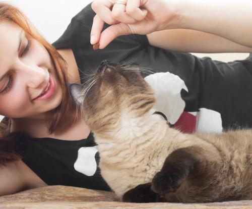 猫を褒めている