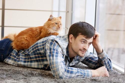 男性の背中に乗る猫