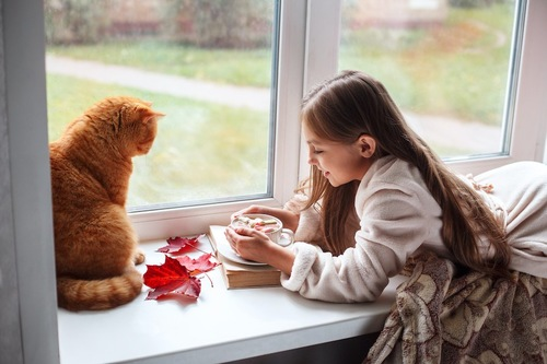 出窓でくつろぐ猫と女の子