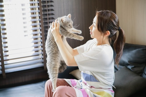 女性に無理やり抱っこされている猫