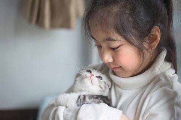 抱っこされて女の子を見る猫