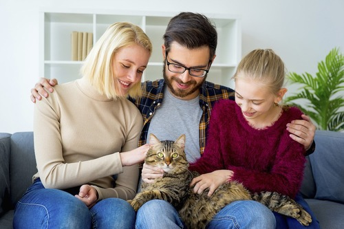 ストレスのある猫を膝に乗せた笑顔の家族