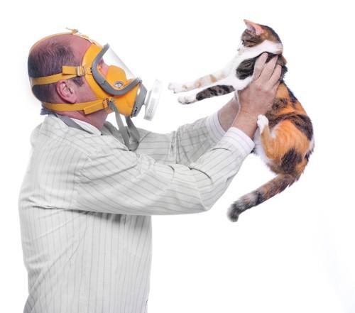 猫アレルギーと人と猫