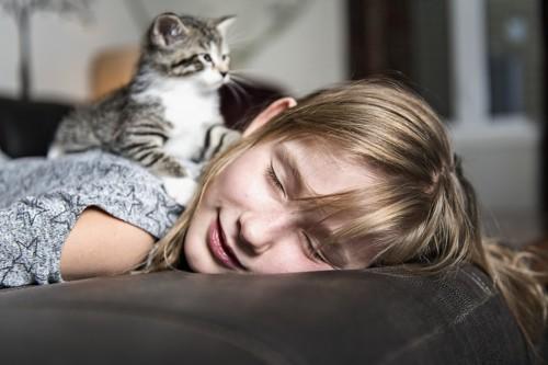 飼い主を独り占めする猫