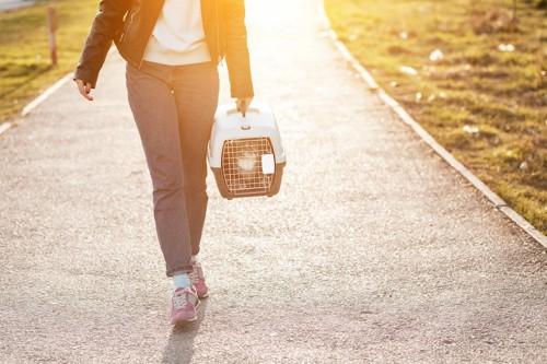猫の入ったキャリーを持って道を歩く人