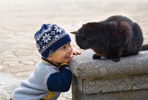 黒猫を見つめる男の子
