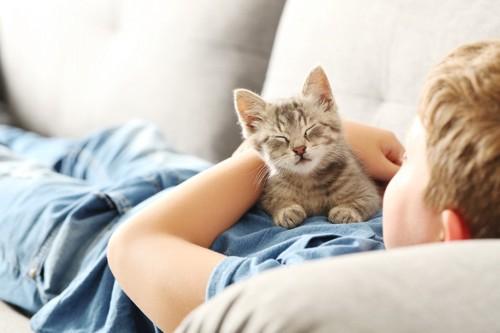 少年の上で甘える猫