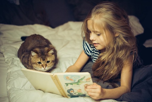 一緒に本を読む女の子と猫