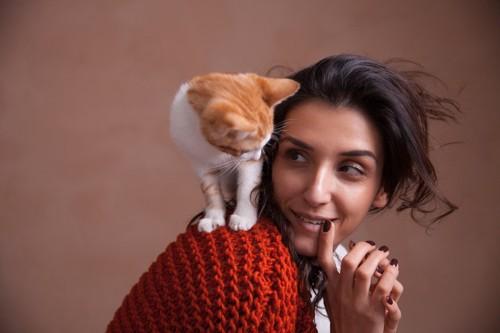 女性の方の上の猫