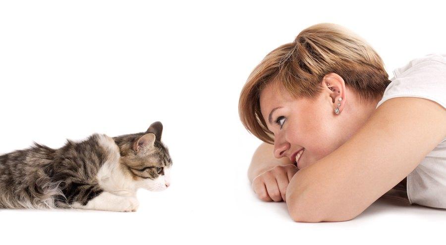 女性と向かい合って見つめ合う猫