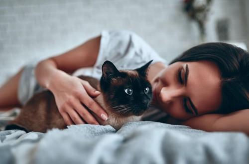 横になった女性の隣に座るシャム猫