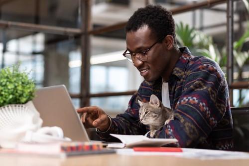 パソコンを見る男性と猫