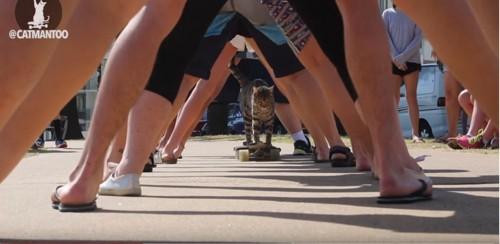 人間の足の中を通り抜けるスケボー猫