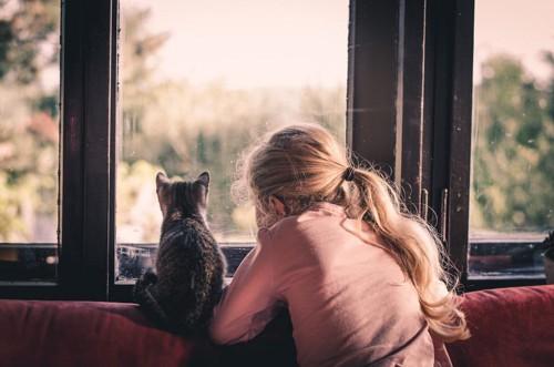窓の外を眺めるこ猫と少女