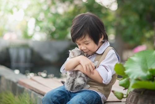 少年に抱っこされている子猫