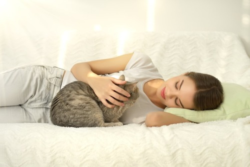 ソファーに横になって猫を撫でる女の子